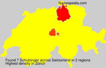 Schutzinger