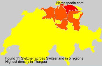 Stelzner