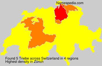 Triebe