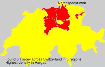 Triebel