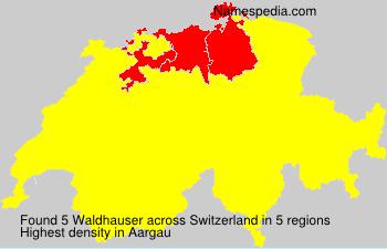 Waldhauser