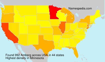 Surname Amberg in USA