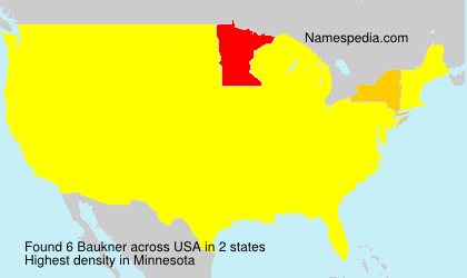 Baukner - USA