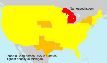 Surname Beag in USA
