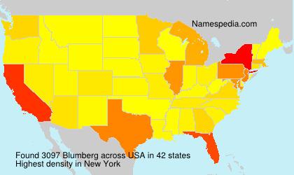Familiennamen Blumberg - USA