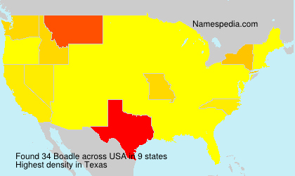 Surname Boadle in USA