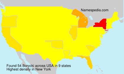 Familiennamen Borycki - USA
