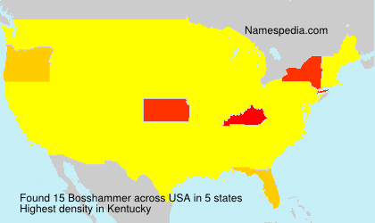 Bosshammer