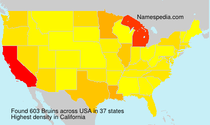 Surname Bruins in USA