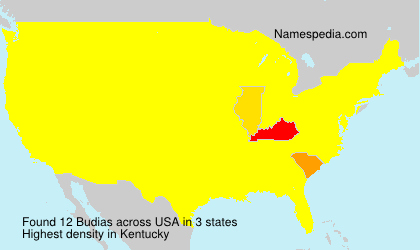 Surname Budias in USA