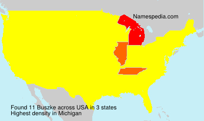Familiennamen Buszke - USA