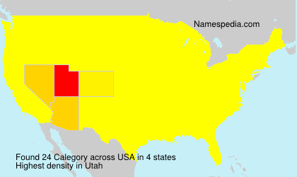Surname Calegory in USA