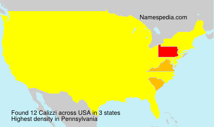 Surname Calizzi in USA