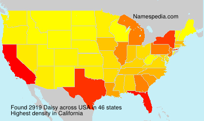 Surname Daisy in USA