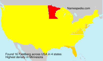 Surname Fjeldberg in USA