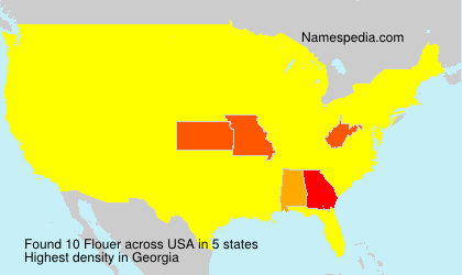 Surname Flouer in USA