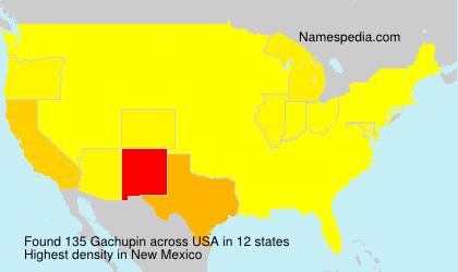 Gachupin