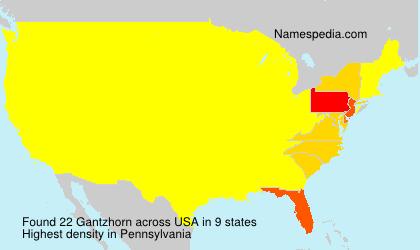 Gantzhorn