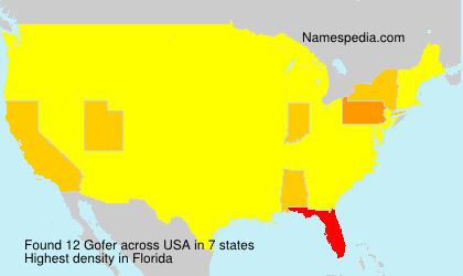 Surname Gofer in USA
