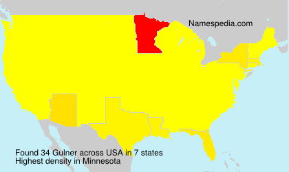 Surname Gulner in USA