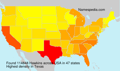 Surname Hawkins in USA