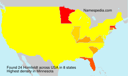 Surname Hornfeldt in USA