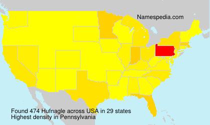Familiennamen Hufnagle - USA