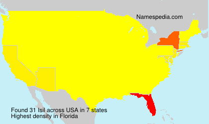 Surname Isil in USA