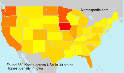 Surname Knoke in USA