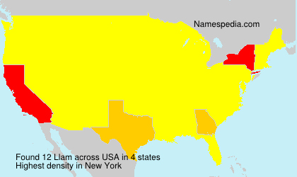 Surname Llam in USA
