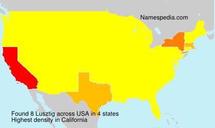 Surname Lusztig in USA