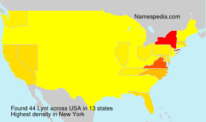 Surname Lynt in USA