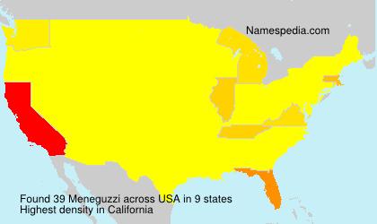 Familiennamen Meneguzzi - USA