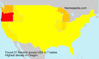 Surname Meulink in USA