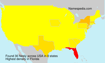 Surname Nesly in USA
