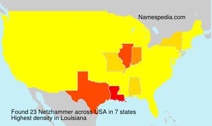 Netzhammer