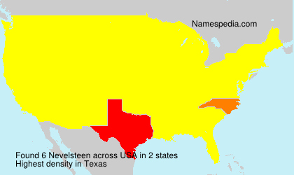 Surname Nevelsteen in USA