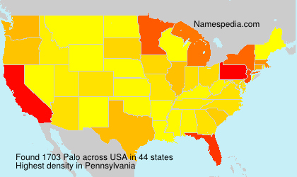 Surname Palo in USA