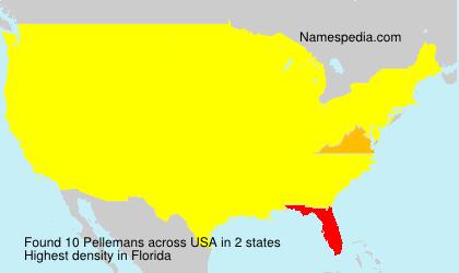Pellemans
