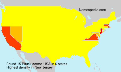 Surname Pituck in USA