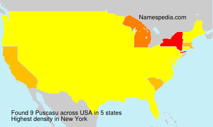 Surname Puscasu in USA