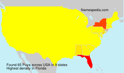 Surname Puya in USA
