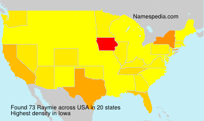 Surname Raymie in USA