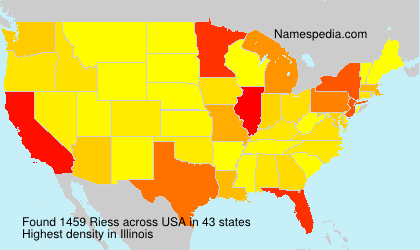 Surname Riess in USA