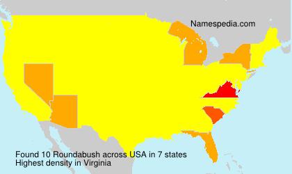 Roundabush