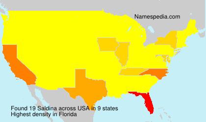 Surname Saldina in USA