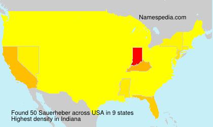 Sauerheber