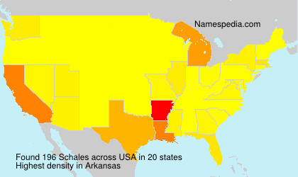 Surname Schales in USA