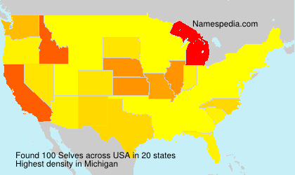 Surname Selves in USA
