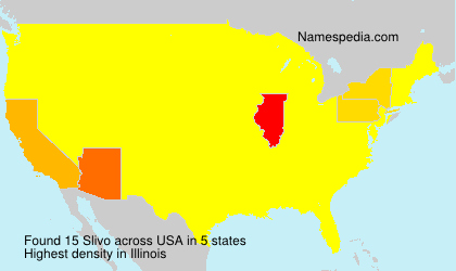 Surname Slivo in USA